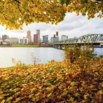 portland, oregon rental trends